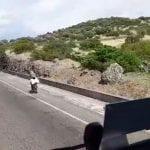 Vuole andare in bicicletta a Sassari, pericolo sulla 131